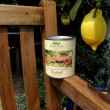 Teaköl: Gartenmöbel aus Teakholz ölen