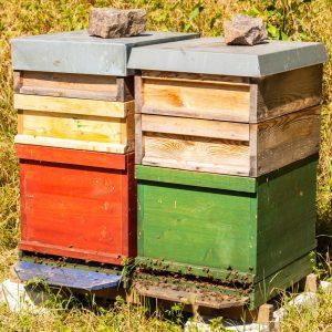 Holzlasur von Natural Naturfarben als Beutenschutz